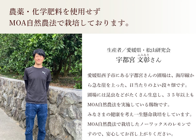 生産者愛媛普及会宇都宮文彰さん