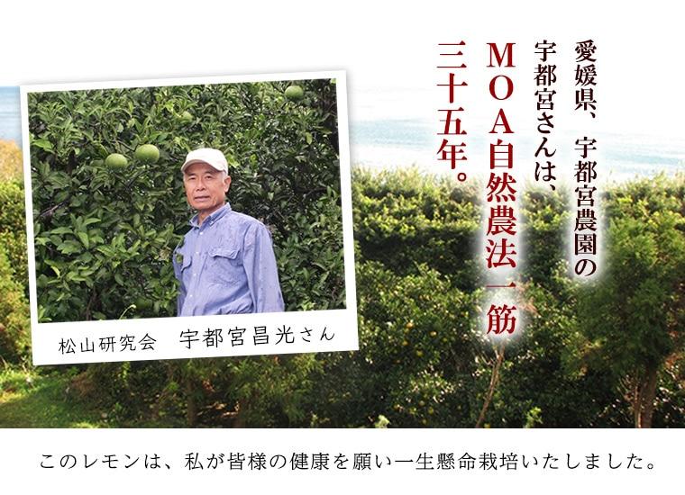 生産者愛媛普及会宇都宮昌光さん