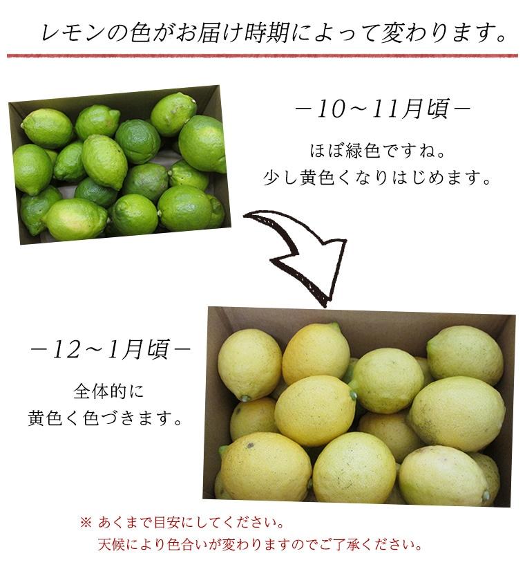 レモンの色合い