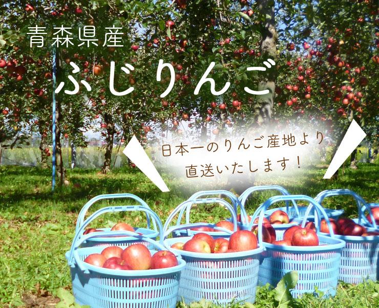 青森県産ふじりんご