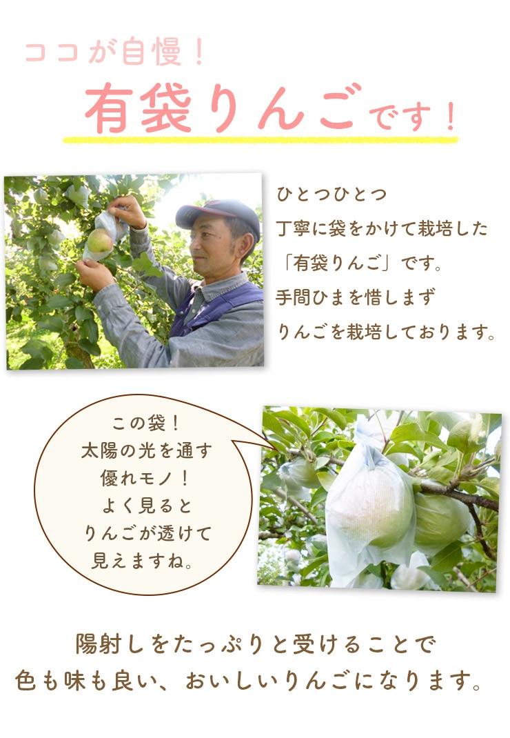 有袋りんご栽培