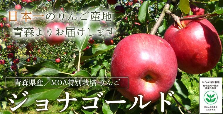 青森県産りんごジョナゴールド