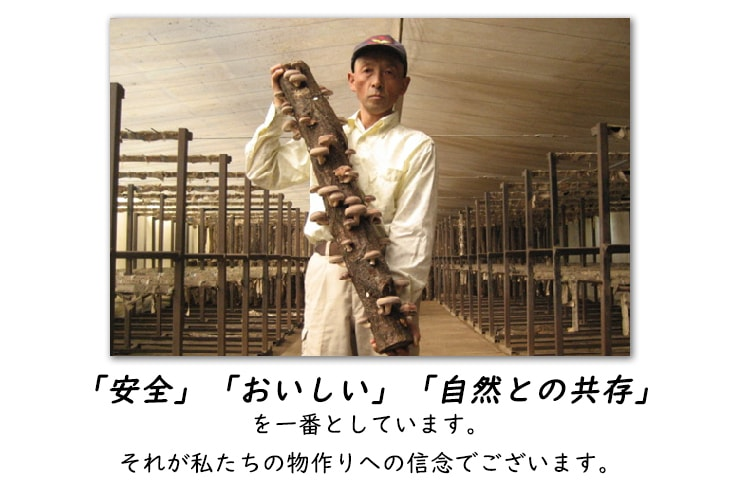 しいたけ・飯塚さん