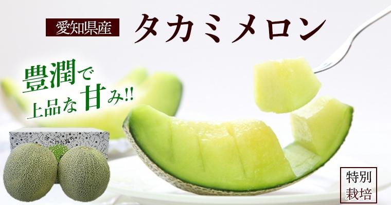 愛知県産タカミメロン