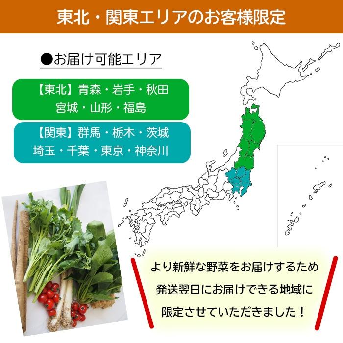 東北関東限定野菜セット