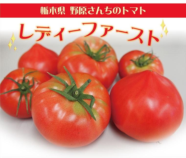 レディーファーストトマト