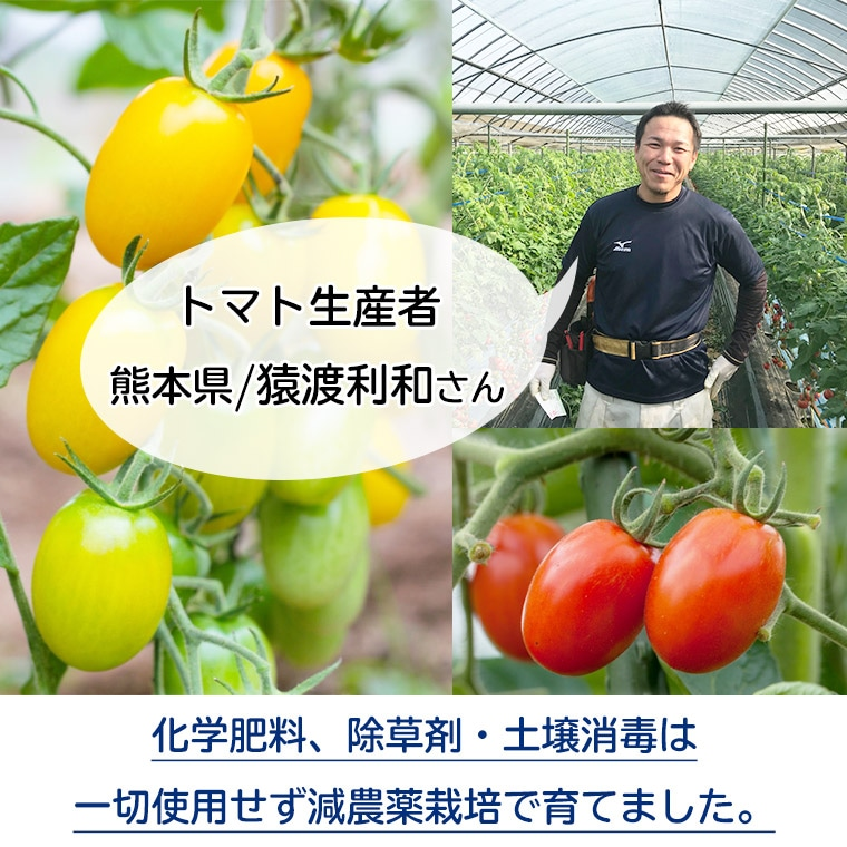 生産者熊本県猿渡利和さん