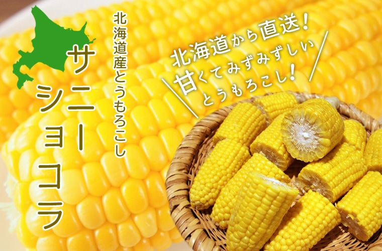 北海道産とうもろこしサニーショコラ