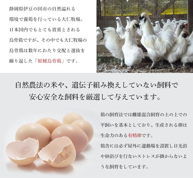 烏骨鶏の特徴と飼料のこだわり