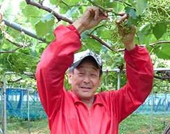 稲泉農園さん