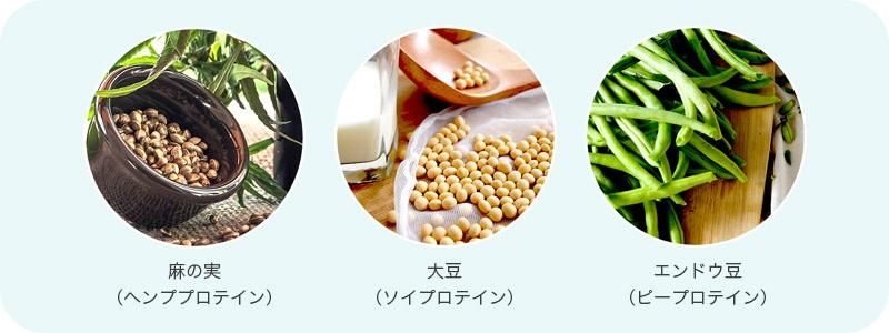 オール植物性