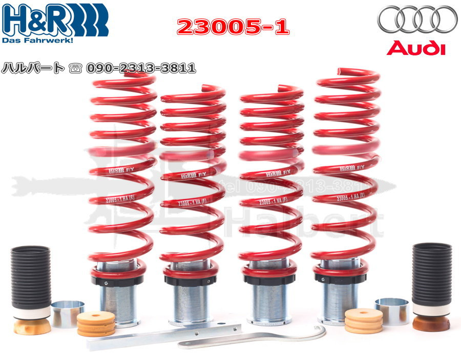 【H&R Height adjustable springs】車高調整機能付アジャストスプリング アウディ R8 V10 & V10 プラス クーペ 4S【Audi R8】【23005 1】 ハルバート