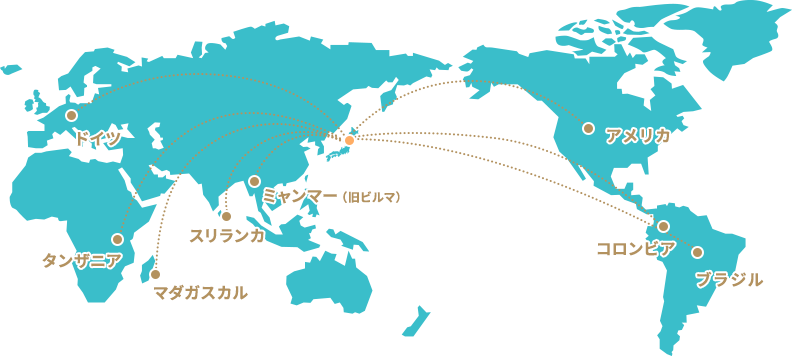 幅広いネットワーク