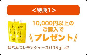 10,000円以上の購入でプレゼント