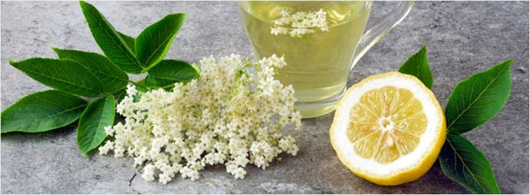 レモンの花のはちみつ