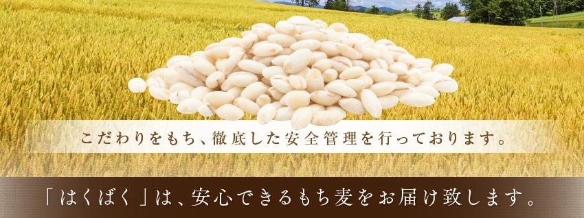 こだわりをもち、徹底した安全管理を行っております。「はくばく」は、安心できるもち麦をお届け致します。