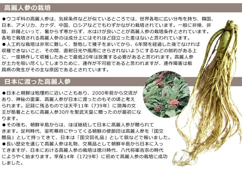 ▼日本に渡った高麗人参の歴史