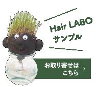 Hair LABO サンプル お取り寄せはこちら