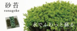 苔栽培セット