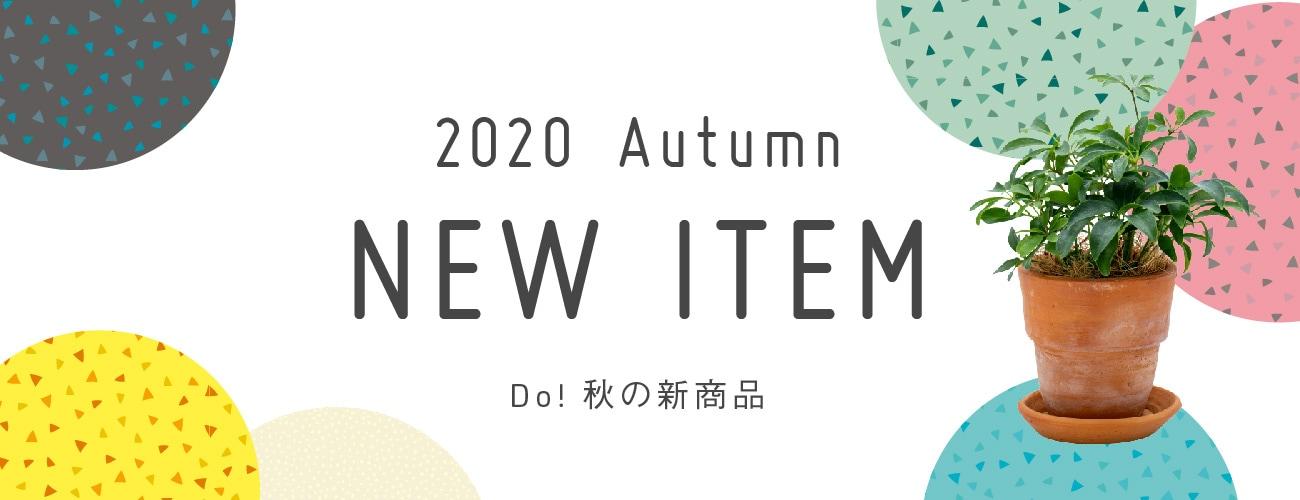 2020秋新商品