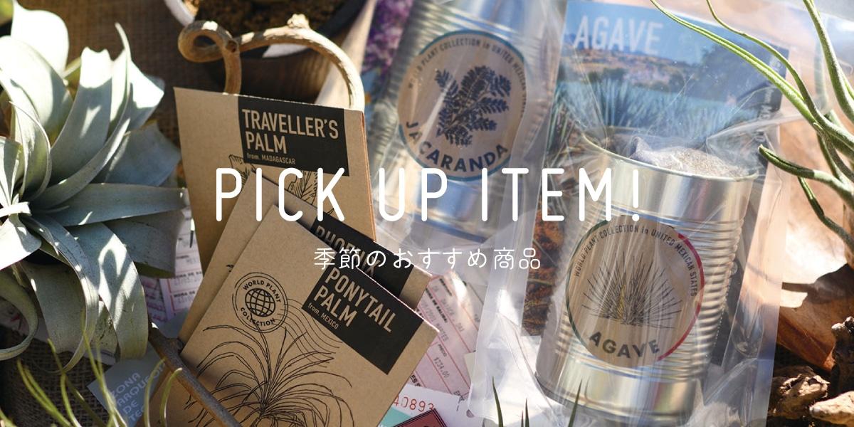 pick up item