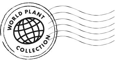 woldplantcollection