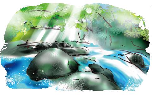 熊本のおいしい水で練り上げた生地だからモチモチ!