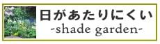 日の当たりにくい庭(シェードガーデン)|赤塚植物園オンライン花の音
