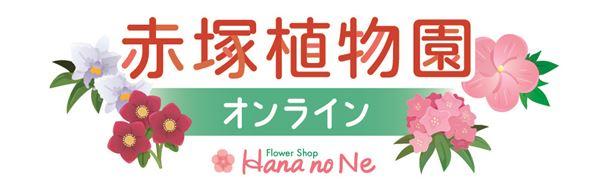 赤塚植物園オンライン フラワーショップ花の音
