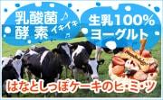 乳酸菌・酵素イキイキ♪たっぷり☆生乳100%ヨーグルト愛犬ケーキのヒ・ミ・ツ