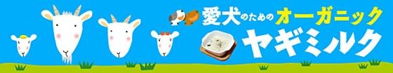 愛犬用オーガニックヤギミルク