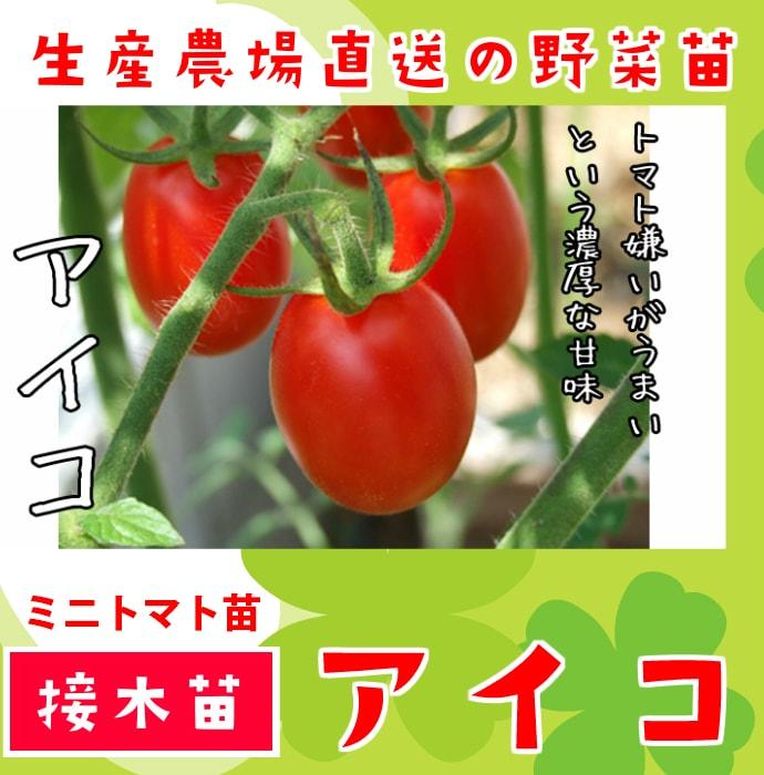 トマト アイコ