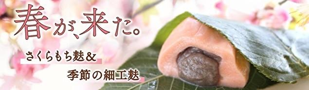 【特集】春が来た(