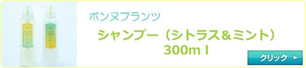 シトラスsnp300
