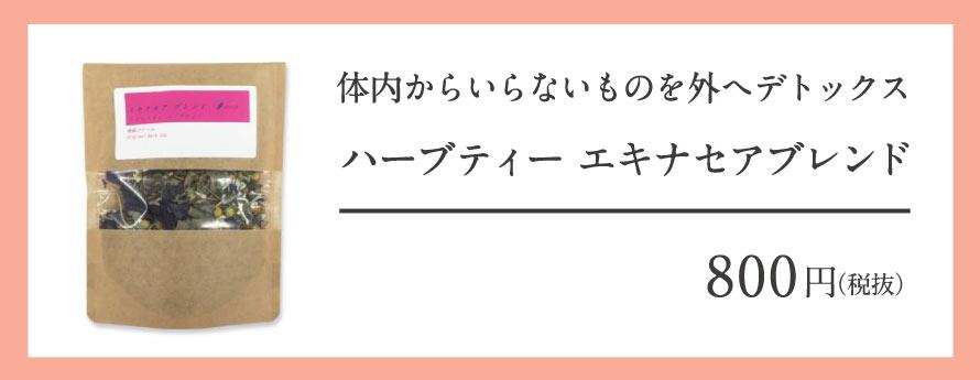 """""""エキナセア"""""""
