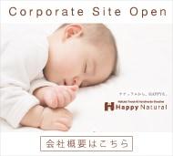 HNコーポレートサイト