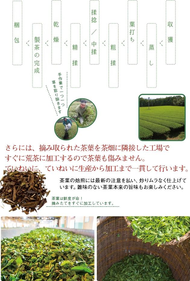 さらには、摘み取られた茶葉を茶畑に隣接した工場で すぐに荒茶に加工するので茶葉も傷みません。ていねいに、ていねいに生産から加工まで一貫して行います。