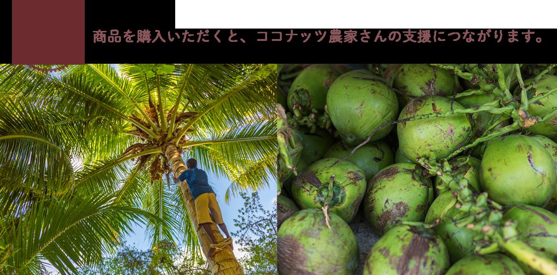 商品を購入いただくと、ココナッツ農家さんの支援につながります。