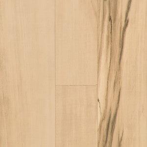 シンコールベスト、BB1565
