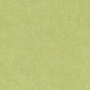 サンゲツファイン、FE6110