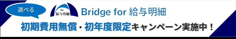 Bridge for 給与明細、初年度割引・初期導入費用一部無償キャンペーンの告知画像