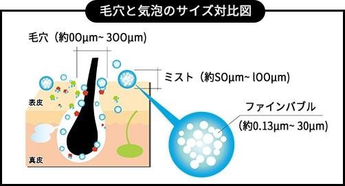 毛穴と気泡のサイズ対比図