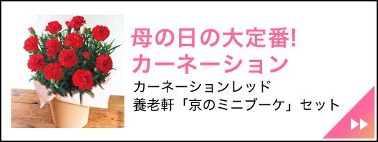 養老軒「京のミニブーケ」セット