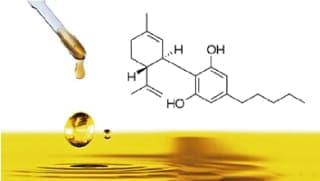 希少成分「γ(ガンマ)-リノレン酸」