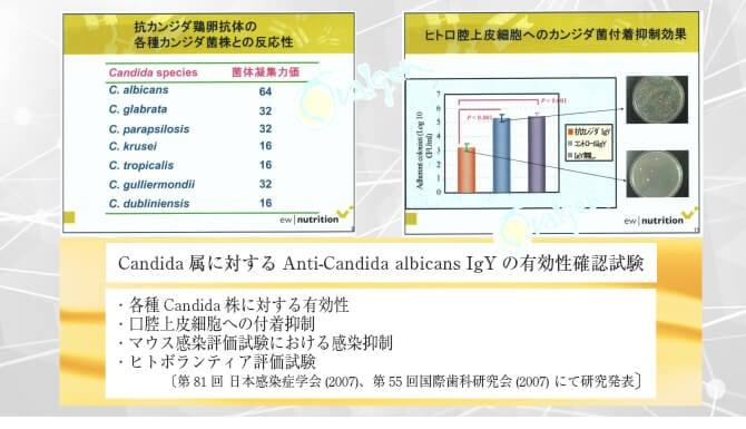 カンジタ研究データ2