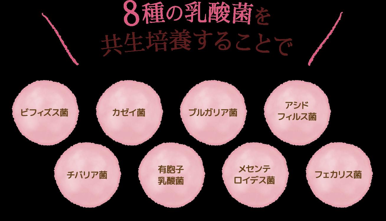 8種類の乳酸菌を共生培養することで