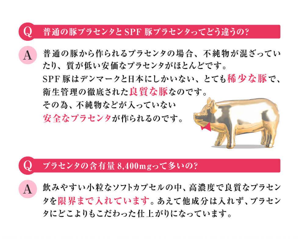 Q.普通の豚プラセンタとSPF豚プラセンタってどう違うの? Q.プラセンタの含有量8,400mgって多いの?