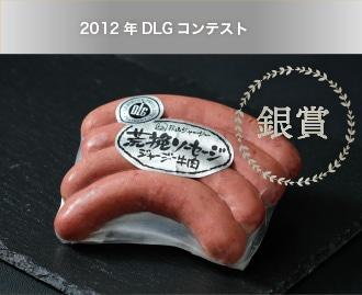 2012年DLGコンテスト 銀賞
