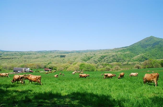 自然に囲まれた蒜山高原