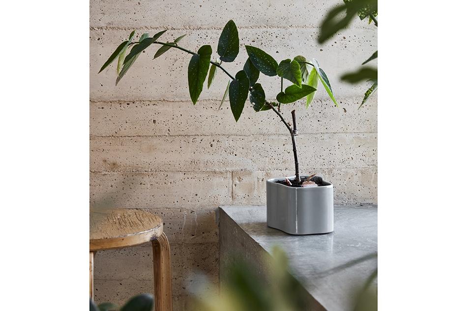 Riihitie Plant Pot/Artek(リーヒティエ プラント ポット/アルテック)